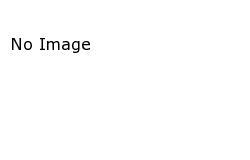 Shea-Style